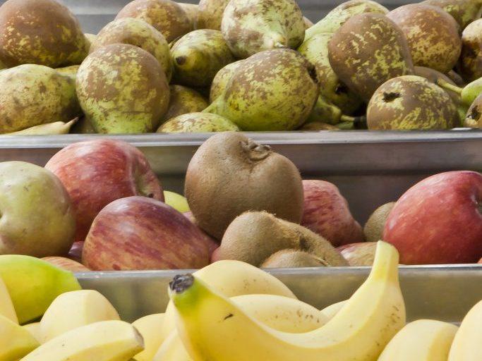 bandejas fruta slider